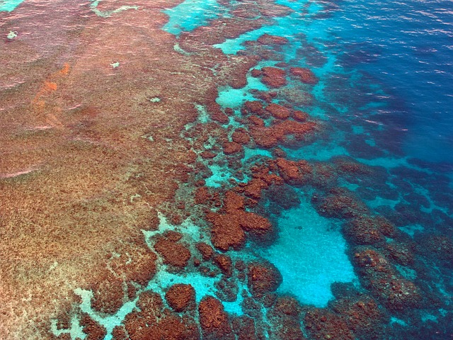 Great Barrier Reef8