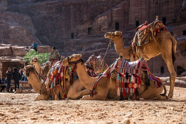Petra hiking tour