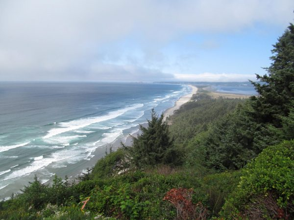 Cape Lookout Surf